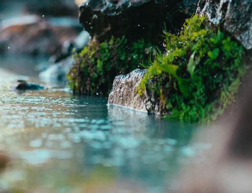 Monitorização da Qualidade da Água