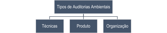 Tipos de auditorias ambientais