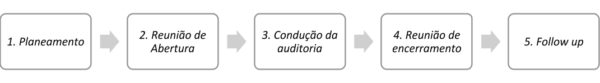 Etapas auditoria interna